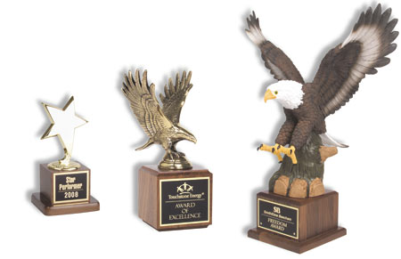 Star & Eagle Specialty Corporate Awards